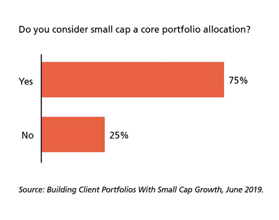 Do you consider small cap a core portfolio allocation? Yes 75%, No 25%