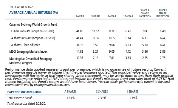 evolving world growth average annual returns and expense ratio 8-31-20