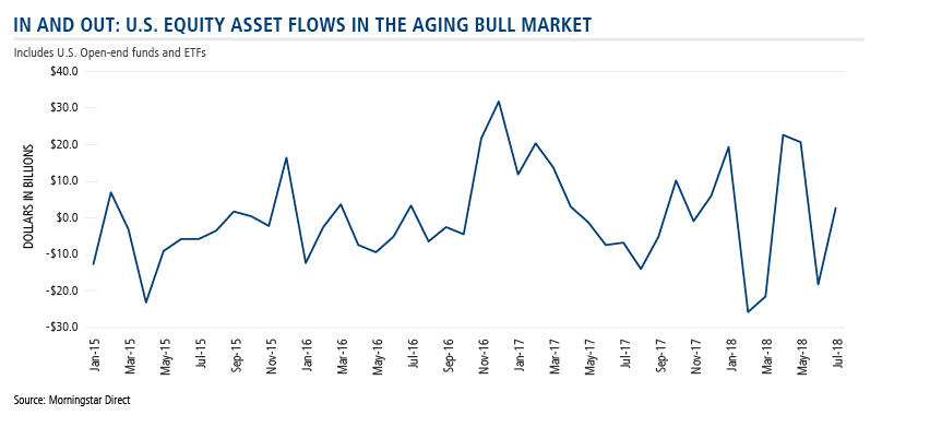 U.S. equity asset flows in the aging bull market