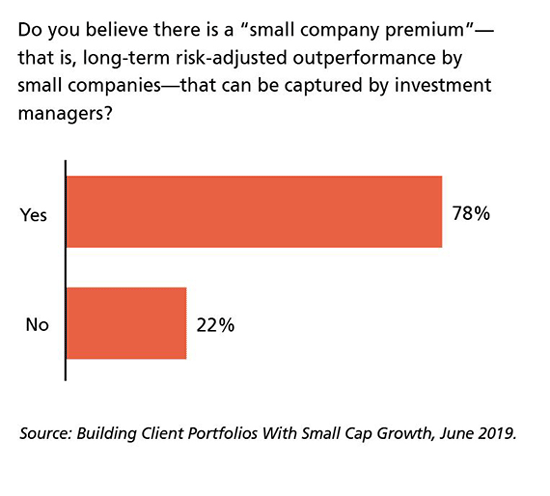 "Do you believe there is a ""small company premium""? Yes 78%, No 22%"