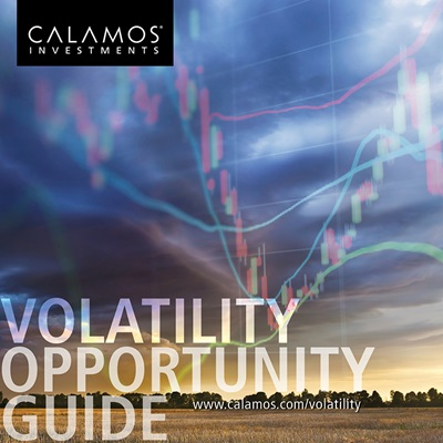 volatility-opportunity-guide