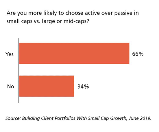 Are you more likely to choose active over passive in small caps vs. large or mid-caps?