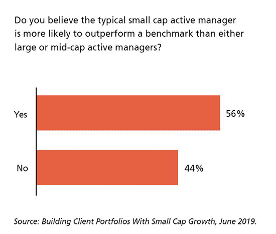 Do you believe the typical small cap active manager is more likely to outperform a benchmark than either large or mid-cap active managers?