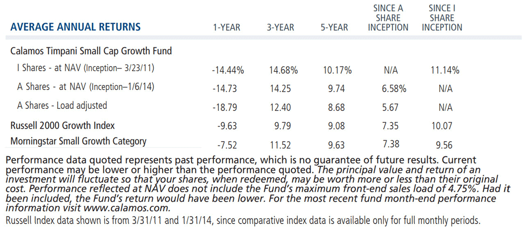 Timpani Small Cap Growth Average Annual Returns