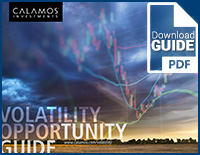 volatility-opportunity-guide-pdf.jpg