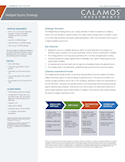 calamos-hedged-equity-institutional-strategy-fact-sheet.pdf